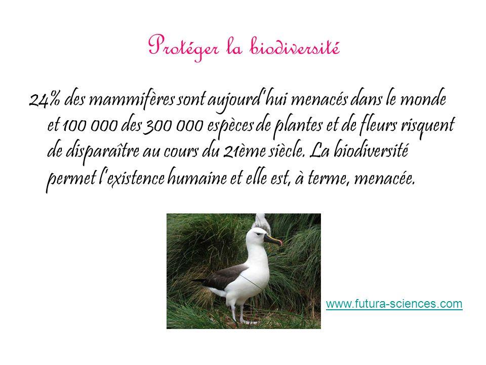 Protéger la biodiversité 24% des mammifères sont aujourdhui menacés dans le monde et 100 000 des 300 000 espèces de plantes et de fleurs risquent de d
