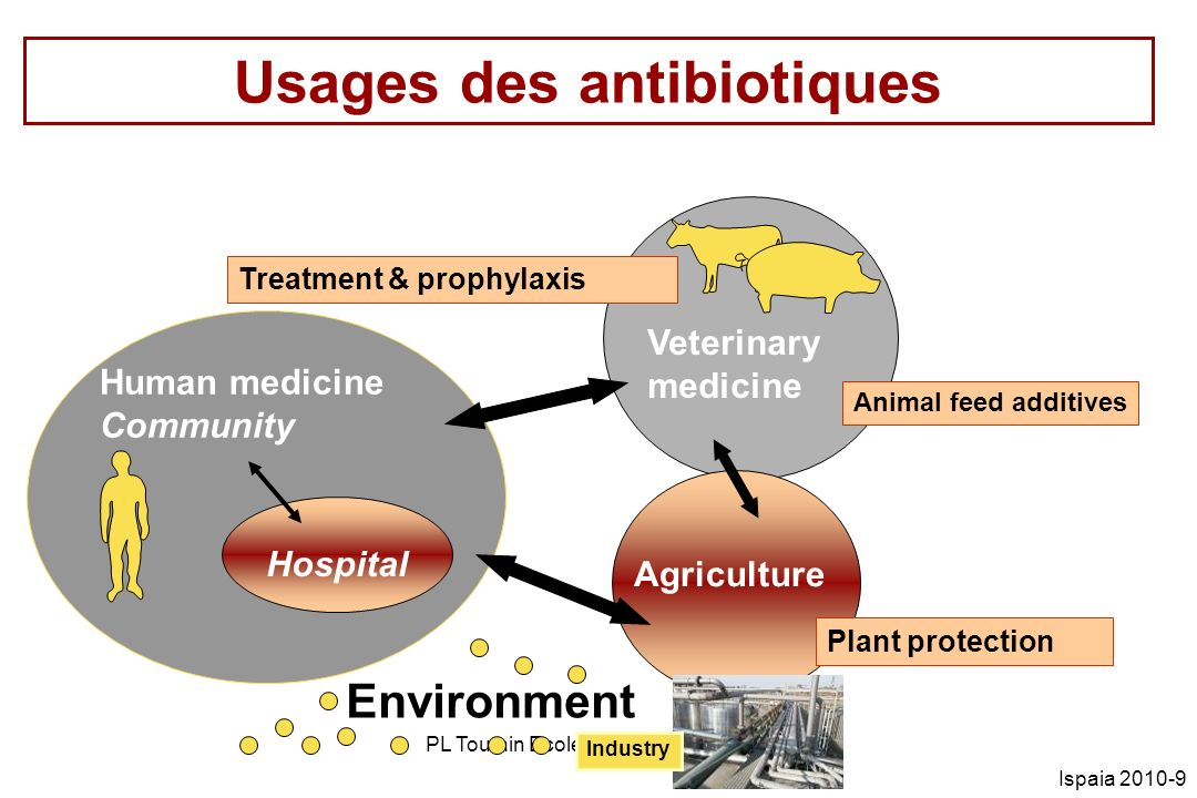 PL Toutain Ecole vétérinaire Toulouse Ispaia 2010-60 E Coli : % résistance N=101 Ampicilline: 20.8% Céphalosporines: 0% Ciprofloxacine: 0% Colistine: 0% Gentamicine: 1% Tétracyclines: 91.1% TMP/Sulfa: 53.5% JAC 2009 63 733-744