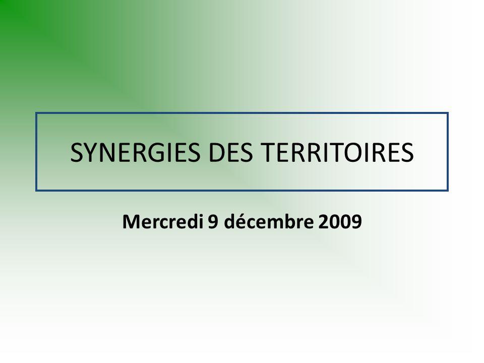 SYNERGIES DES TERRITOIRES Mercredi 9 décembre 2009