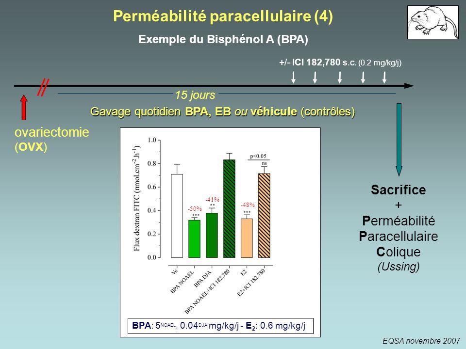 Gavage quotidien BPA, EB ou véhicule (contrôles) +/- ICI 182,780 s.c. (0.2 mg/kg/j) 15 jours Sacrifice + Perméabilité Paracellulaire Colique (Ussing)