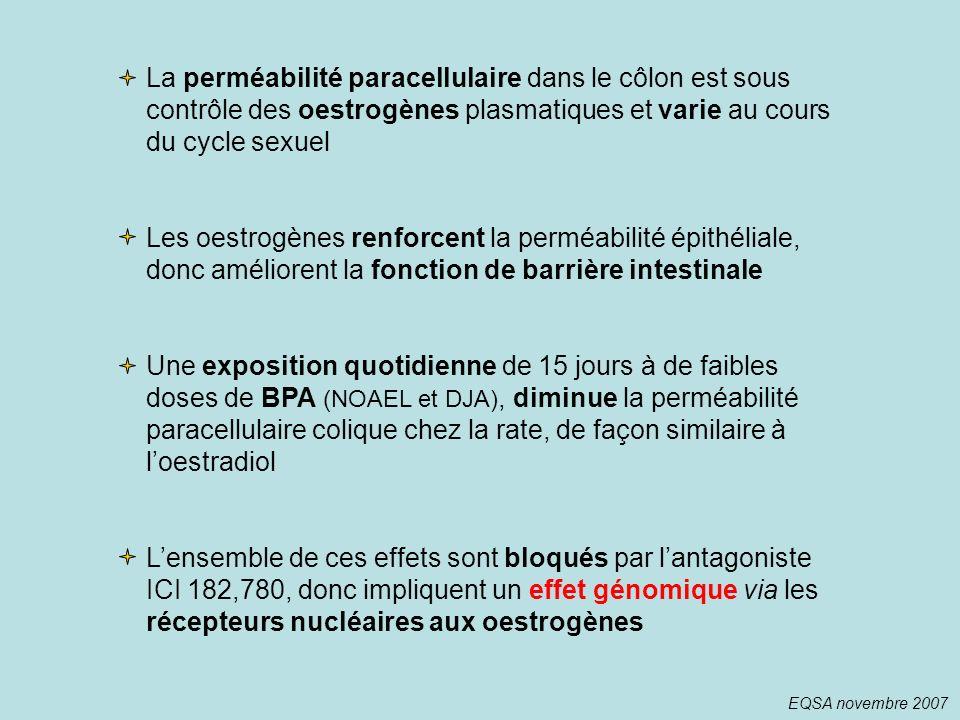 La perméabilité paracellulaire dans le côlon est sous contrôle des oestrogènes plasmatiques et varie au cours du cycle sexuel Les oestrogènes renforce