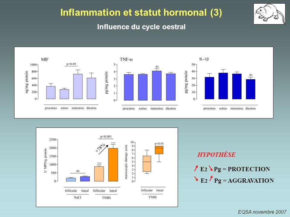 E 2 Pg = AGGRAVATION E 2 Pg = PROTECTION HYPOTHÈSE Inflammation et statut hormonal (3) Influence du cycle oestral +78% EQSA novembre 2007