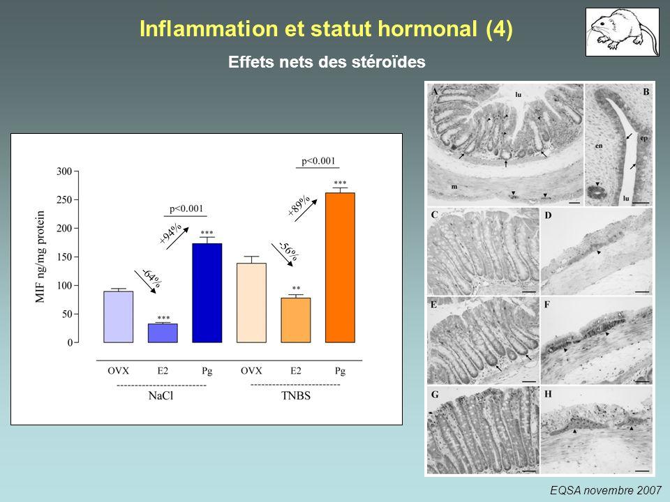 Inflammation et statut hormonal (4) Effets nets des stéroïdes +94% -64% +89% -56% EQSA novembre 2007