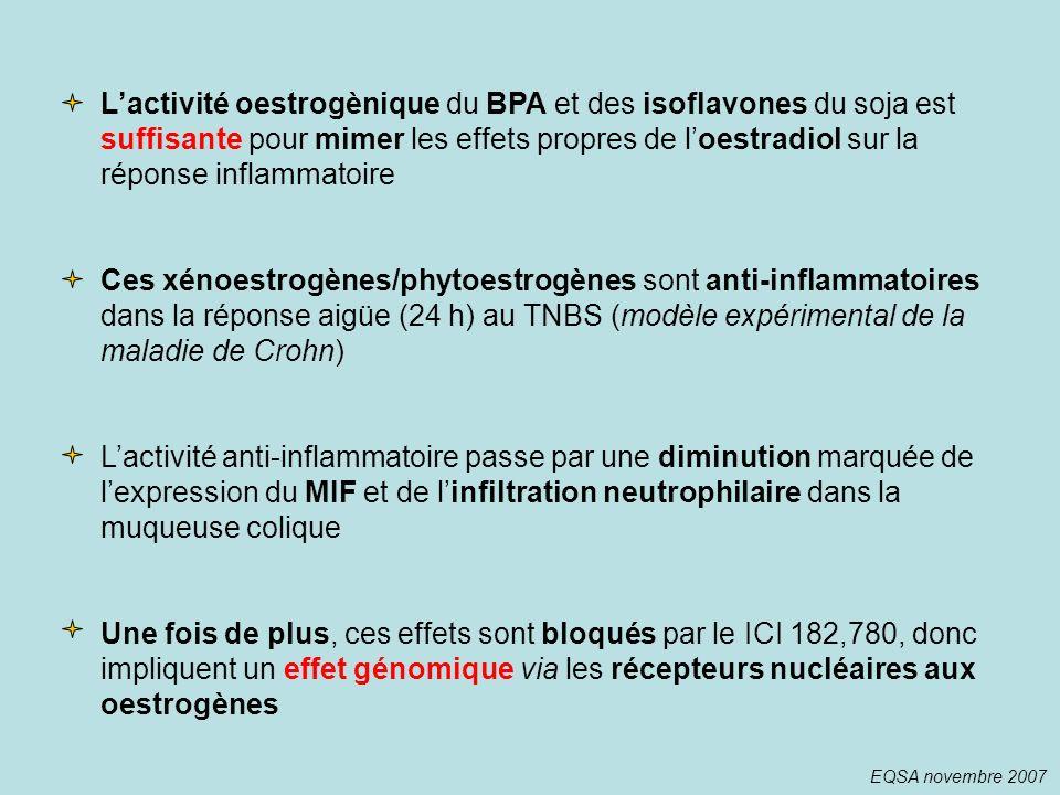 Lactivité oestrogènique du BPA et des isoflavones du soja est suffisante pour mimer les effets propres de loestradiol sur la réponse inflammatoire Ces