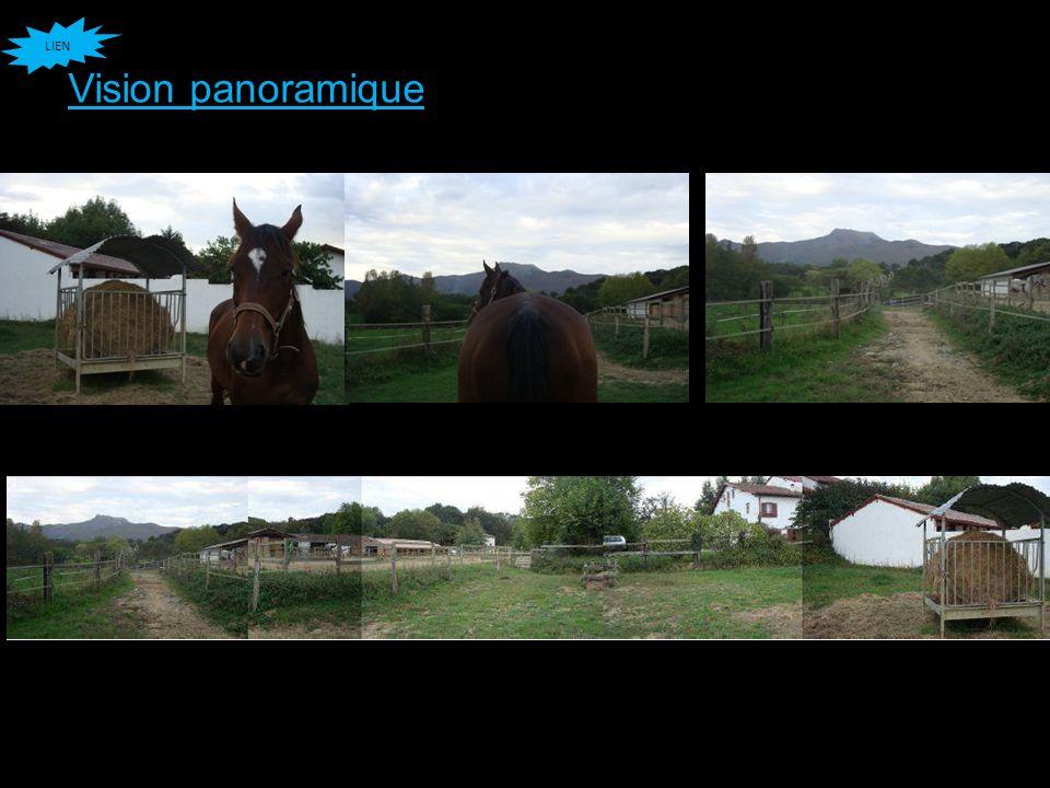 Vision panoramique LIEN