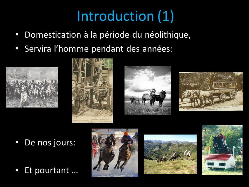 Introduction (1) Domestication à la période du néolithique, Servira lhomme pendant des années: De nos jours: Et pourtant …