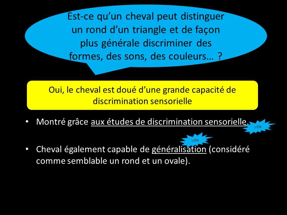 Montré grâce aux études de discrimination sensorielle. Cheval également capable de généralisation (considéré comme semblable un rond et un ovale). Est