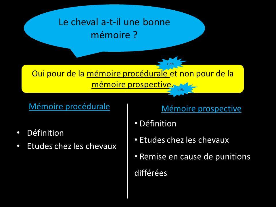 Mémoire procédurale Définition Etudes chez les chevaux Le cheval a-t-il une bonne mémoire ? Oui pour de la mémoire procédurale et non pour de la mémoi
