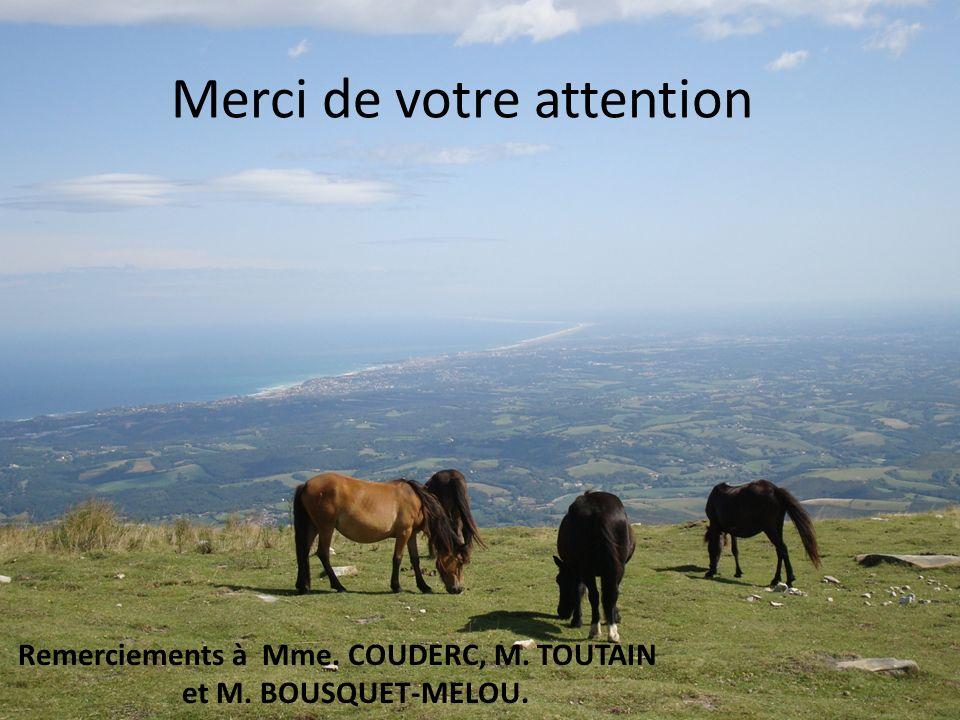 Merci de votre attention Remerciements à Mme. COUDERC, M. TOUTAIN et M. BOUSQUET-MELOU.