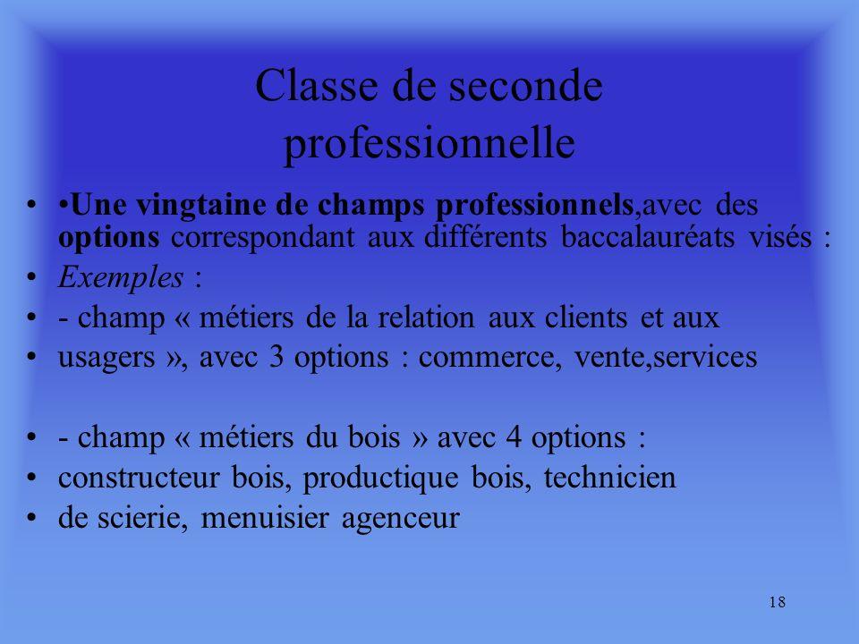 17 La classe de seconde professionnelle sera organisée : soit en champs professionnels,(sur la base déléments professionnels communs à plusieurs bacca
