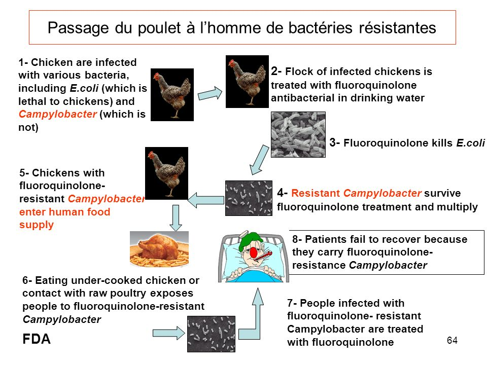 64 Passage du poulet à lhomme de bactéries résistantes 1- Chicken are infected with various bacteria, including E.coli (which is lethal to chickens) and Campylobacter (which is not) 5- Chickens with fluoroquinolone- resistant Campylobacter enter human food supply 6- Eating under-cooked chicken or contact with raw poultry exposes people to fluoroquinolone-resistant Campylobacter 2- Flock of infected chickens is treated with fluoroquinolone antibacterial in drinking water 3- Fluoroquinolone kills E.coli 4- Resistant Campylobacter survive fluoroquinolone treatment and multiply 8- Patients fail to recover because they carry fluoroquinolone- resistance Campylobacter 7- People infected with fluoroquinolone- resistant Campylobacter are treated with fluoroquinolone FDA