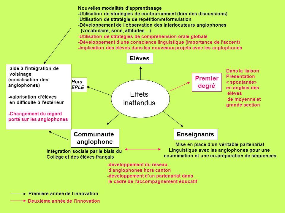 Effets inattendus Elèves Nouvelles modalités dapprentissage -Utilisation de stratégies de contournement (lors des discussions) -Utilisation de stratég