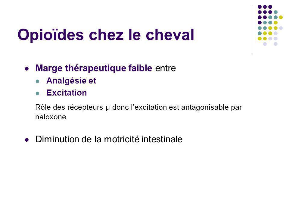 Opioïdes chez le cheval Marge thérapeutique faible entre Analgésie et Excitation Rôle des récepteurs μ donc lexcitation est antagonisable par naloxone