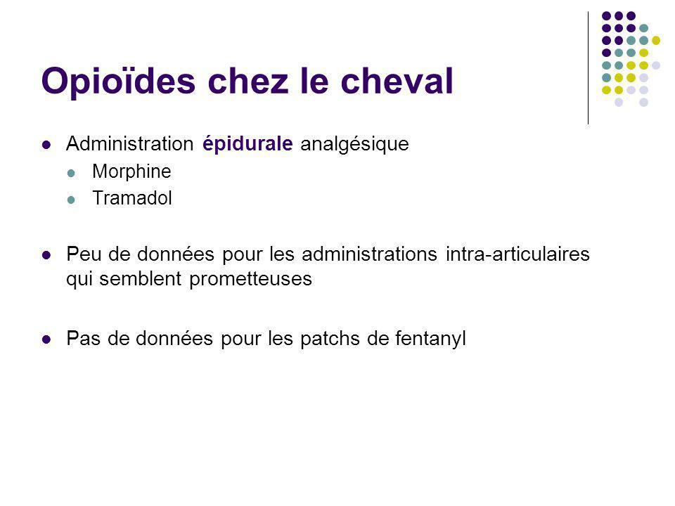 Opioïdes chez le cheval Administration épidurale analgésique Morphine Tramadol Peu de données pour les administrations intra-articulaires qui semblent