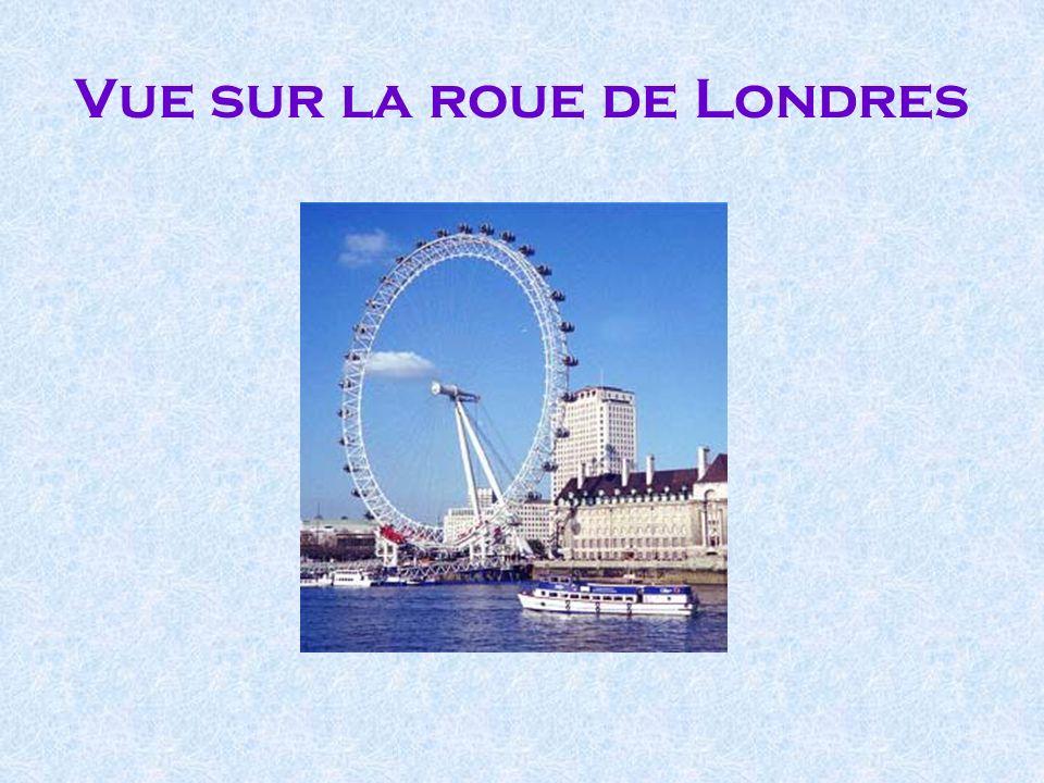 Vue sur la roue de Londres