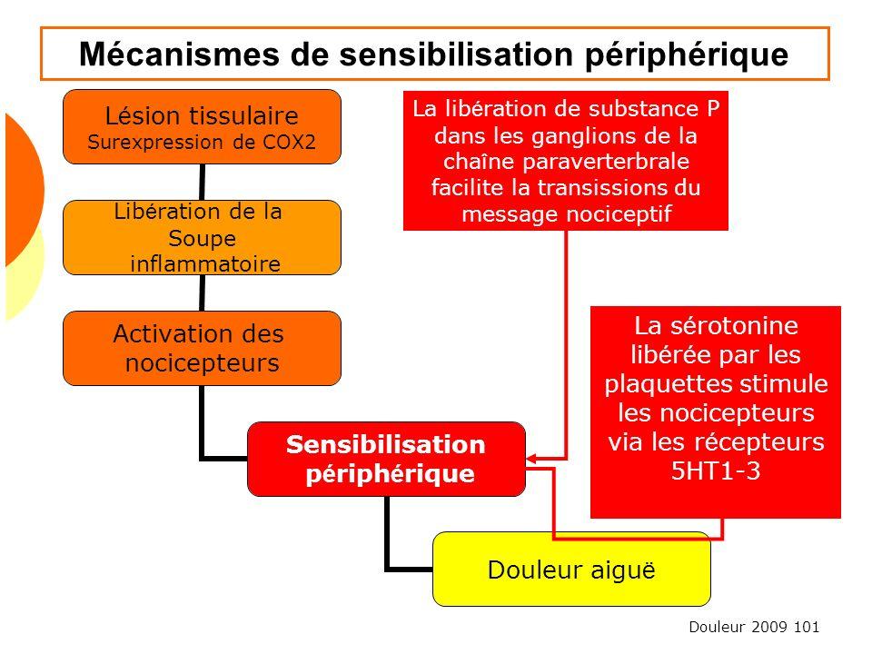 Douleur 2009 101 Mécanismes de sensibilisation périphérique La lib é ration de substance P dans les ganglions de la cha î ne paraverterbrale facilite