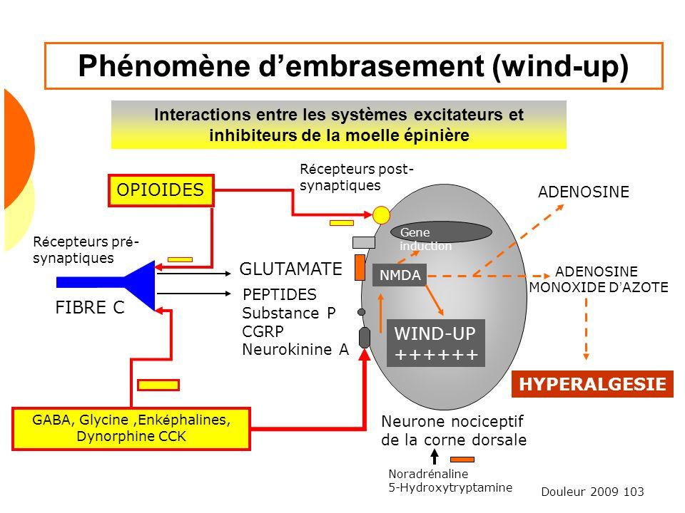 Douleur 2009 103 Phénomène dembrasement (wind-up) Interactions entre les systèmes excitateurs et inhibiteurs de la moelle épinière OPIOIDES R é cepteu