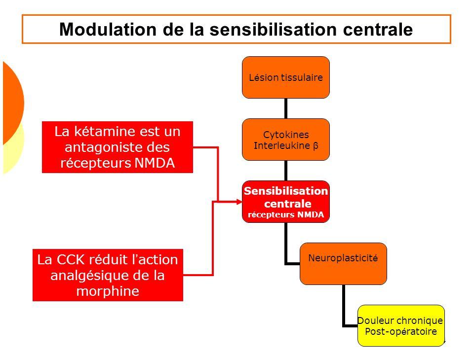 Douleur 2009 104 Modulation de la sensibilisation centrale La k é tamine est un antagoniste des r é cepteurs NMDA La CCK r é duit l action analg é siq