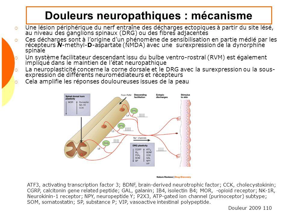 Douleur 2009 110 Douleurs neuropathiques : mécanisme Une lésion périphérique du nerf entraîne des décharges ectopiques à partir du site lésé, au nivea