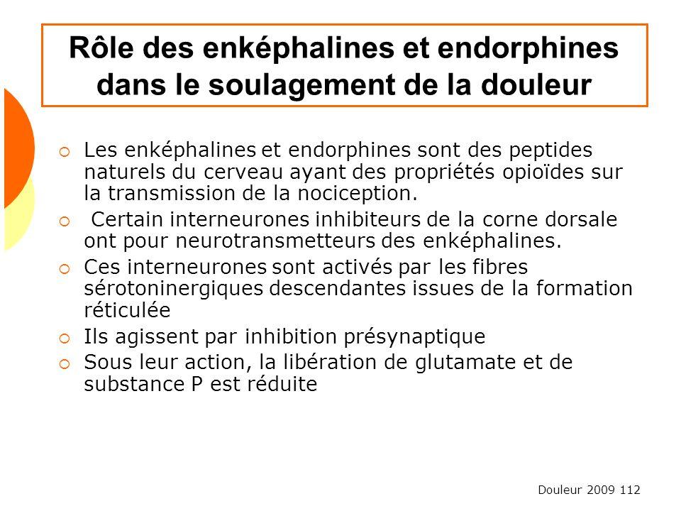 Douleur 2009 112 Rôle des enképhalines et endorphines dans le soulagement de la douleur Les enképhalines et endorphines sont des peptides naturels du