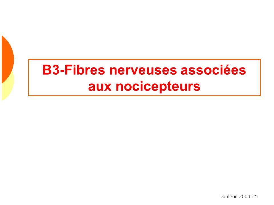 Douleur 2009 25 B3-Fibres nerveuses associées aux nocicepteurs