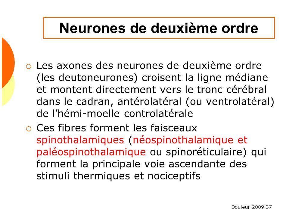 Douleur 2009 37 Neurones de deuxième ordre Les axones des neurones de deuxième ordre (les deutoneurones) croisent la ligne médiane et montent directem