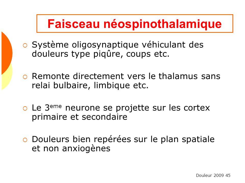 Douleur 2009 45 Faisceau néospinothalamique Système oligosynaptique véhiculant des douleurs type piqûre, coups etc. Remonte directement vers le thalam