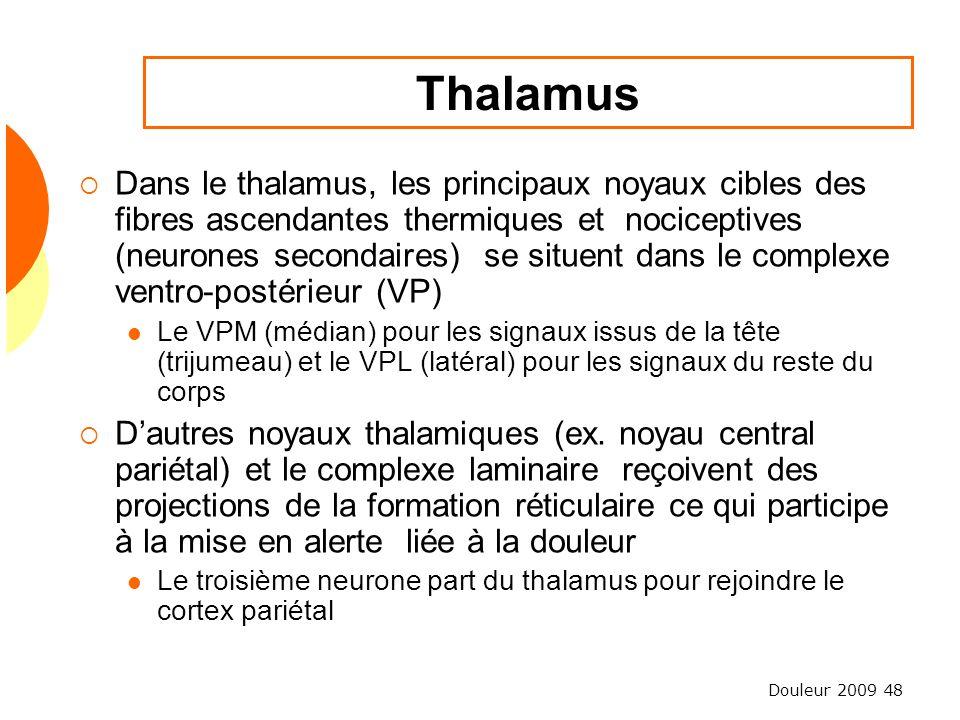 Douleur 2009 48 Thalamus Dans le thalamus, les principaux noyaux cibles des fibres ascendantes thermiques et nociceptives (neurones secondaires) se si