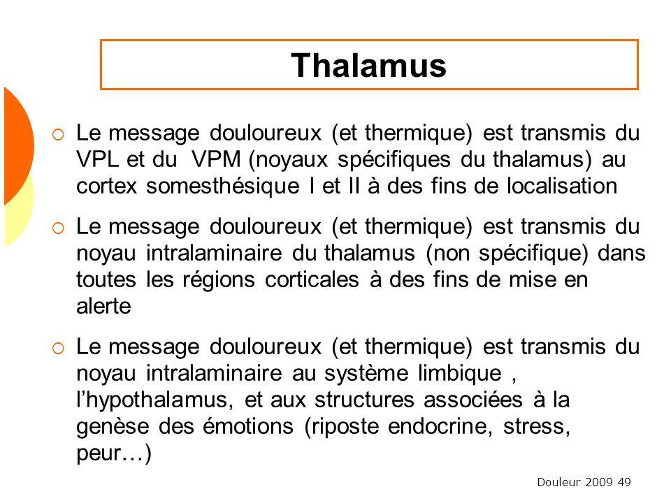 Douleur 2009 49 Thalamus Le message douloureux (et thermique) est transmis du VPL et du VPM (noyaux spécifiques du thalamus) au cortex somesthésique I
