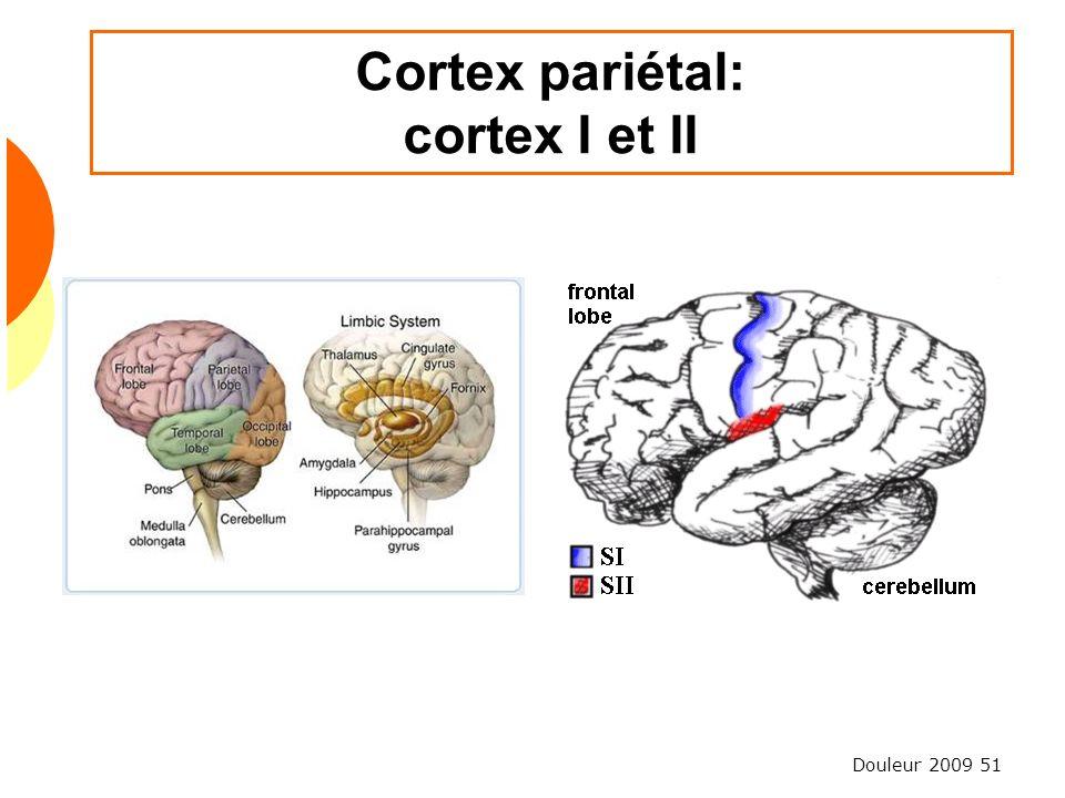 Douleur 2009 51 Cortex pariétal: cortex I et II