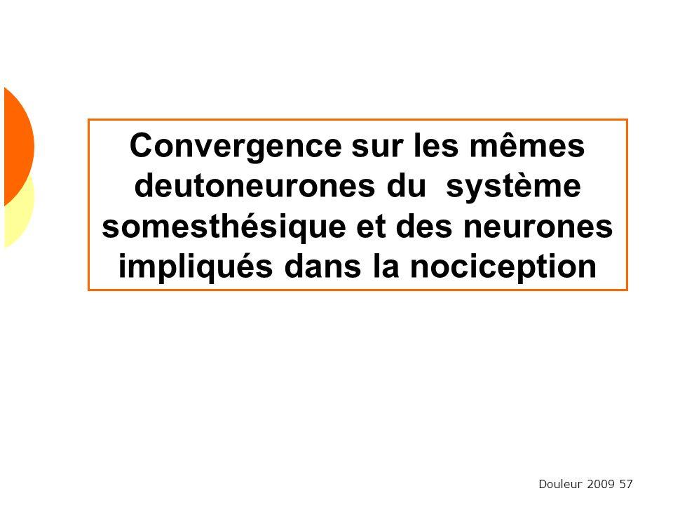 Douleur 2009 57 Convergence sur les mêmes deutoneurones du système somesthésique et des neurones impliqués dans la nociception