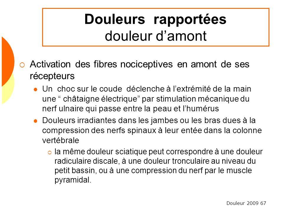 Douleur 2009 67 Douleurs rapportées douleur damont Activation des fibres nociceptives en amont de ses récepteurs Un choc sur le coude déclenche à lext