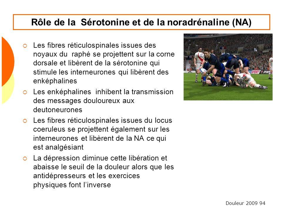 Douleur 2009 94 Rôle de la Sérotonine et de la noradrénaline (NA) Les fibres réticulospinales issues des noyaux du raphé se projettent sur la corne do