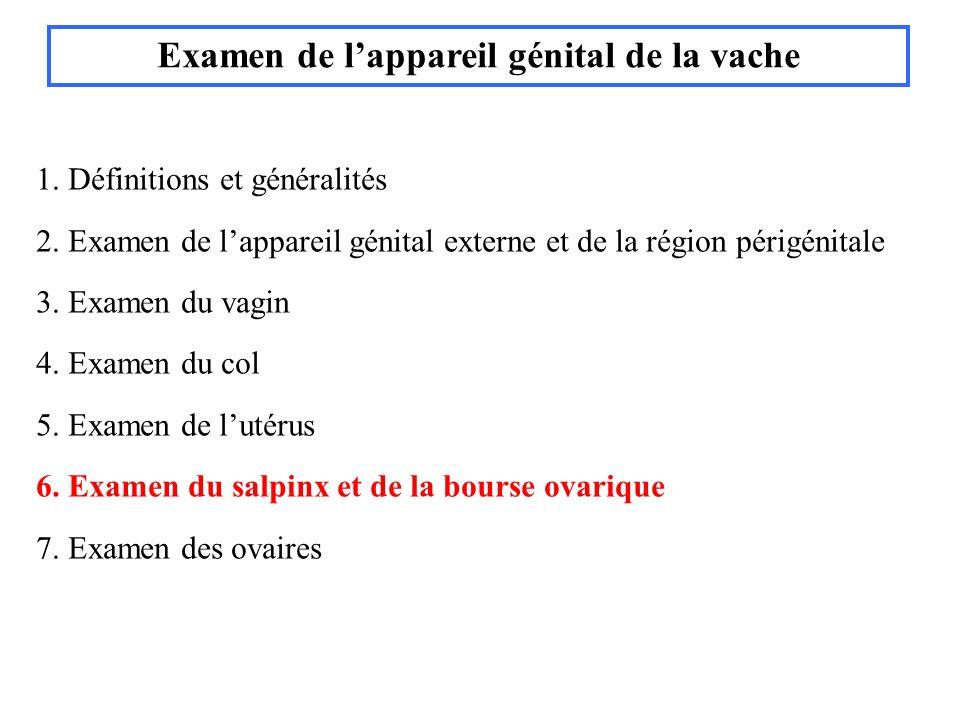 1. Définitions et généralités 2. Examen de lappareil génital externe et de la région périgénitale 3. Examen du vagin 4. Examen du col 5. Examen de lut