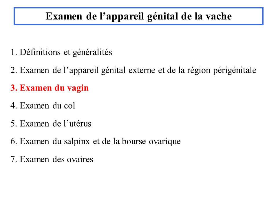 Col de vache : glaire de chaleur Cathétérisme du col : IA lavage utérin, antibiothérapie in utero transplantation embryonnaire