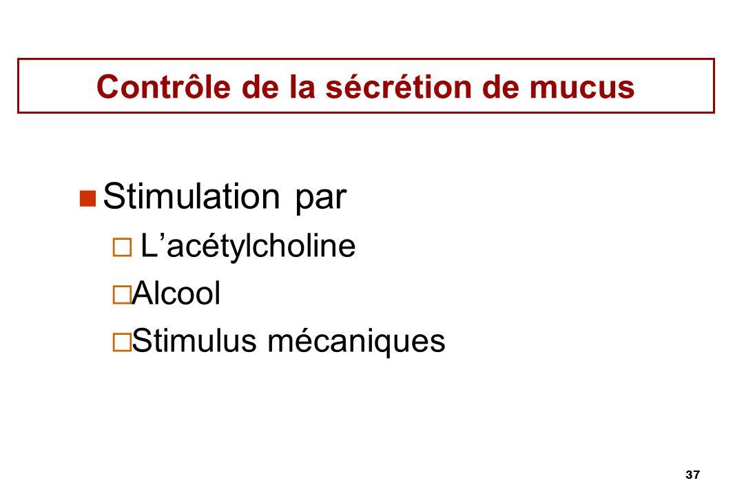 37 Contrôle de la sécrétion de mucus Stimulation par Lacétylcholine Alcool Stimulus mécaniques
