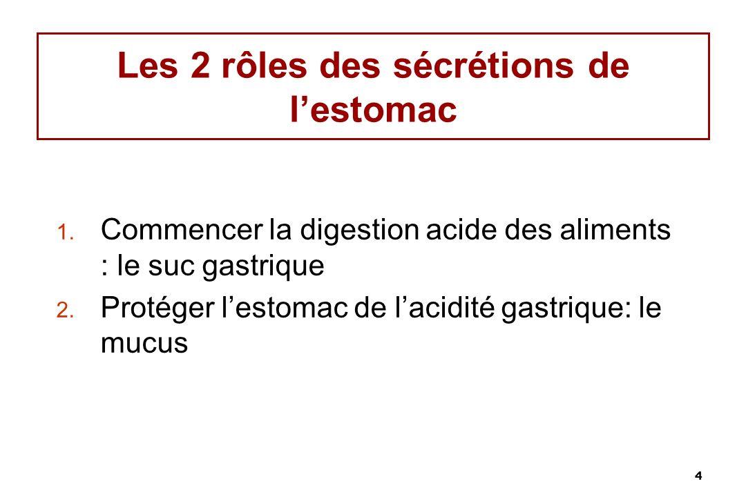 4 Les 2 rôles des sécrétions de lestomac 1. Commencer la digestion acide des aliments : le suc gastrique 2. Protéger lestomac de lacidité gastrique: l