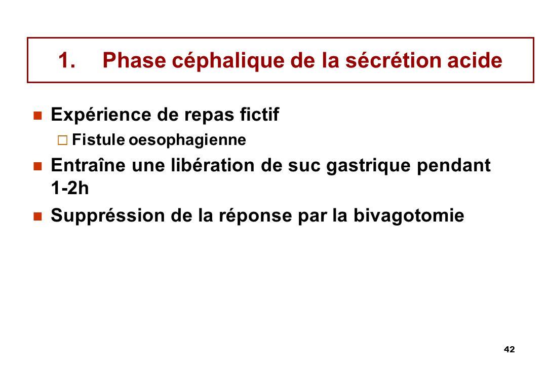 42 1.Phase céphalique de la sécrétion acide Expérience de repas fictif Fistule oesophagienne Entraîne une libération de suc gastrique pendant 1-2h Sup