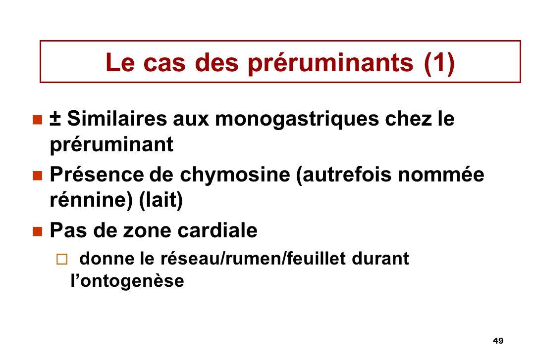 49 Le cas des préruminants (1) ± Similaires aux monogastriques chez le préruminant Présence de chymosine (autrefois nommée rénnine) (lait) Pas de zone