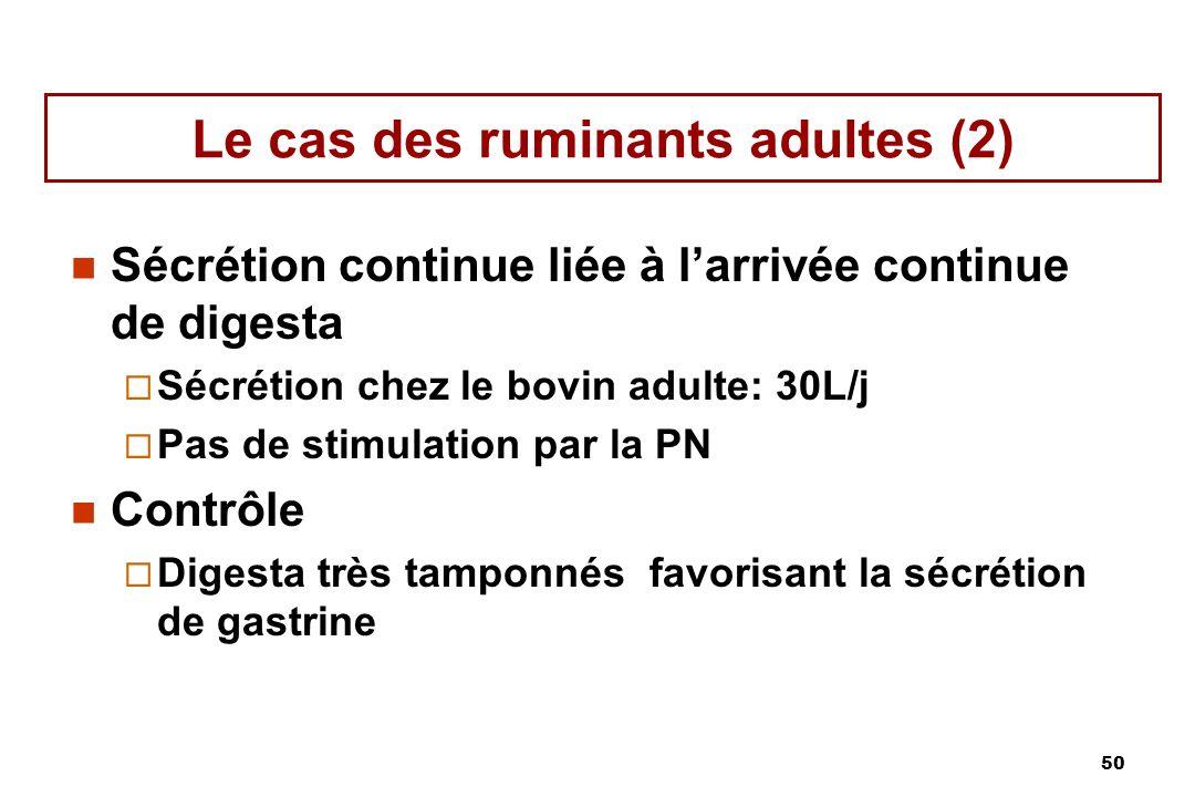 50 Le cas des ruminants adultes (2) Sécrétion continue liée à larrivée continue de digesta Sécrétion chez le bovin adulte: 30L/j Pas de stimulation pa