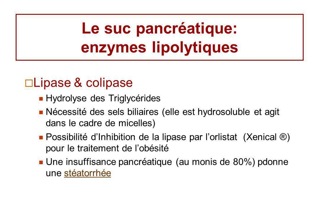 Le suc pancréatique: enzymes lipolytiques Lipase & colipase Hydrolyse des Triglycérides Nécessité des sels biliaires (elle est hydrosoluble et agit da
