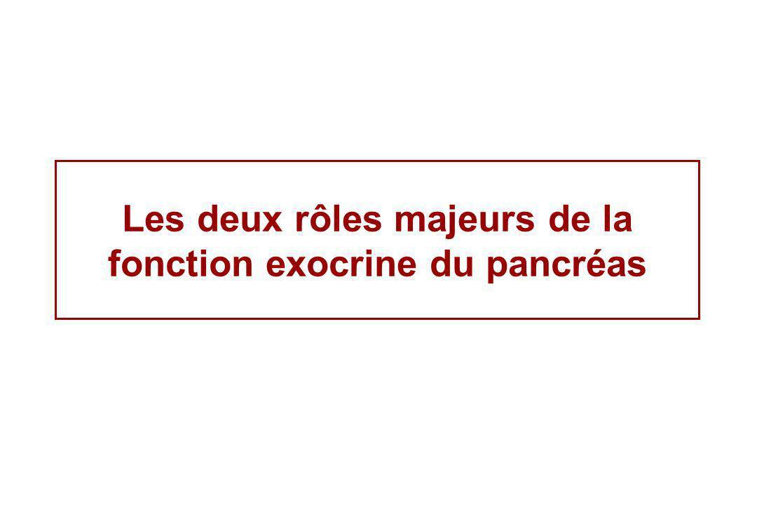 Le suc pancréatique: enzymes lipolytiques Lipase & colipase Hydrolyse des Triglycérides Nécessité des sels biliaires (elle est hydrosoluble et agit dans le cadre de micelles) Possibilité dInhibition de la lipase par lorlistat (Xenical ®) pour le traitement de lobésité Une insuffisance pancréatique (au monis de 80%) pdonne une stéatorrhéestéatorrhée