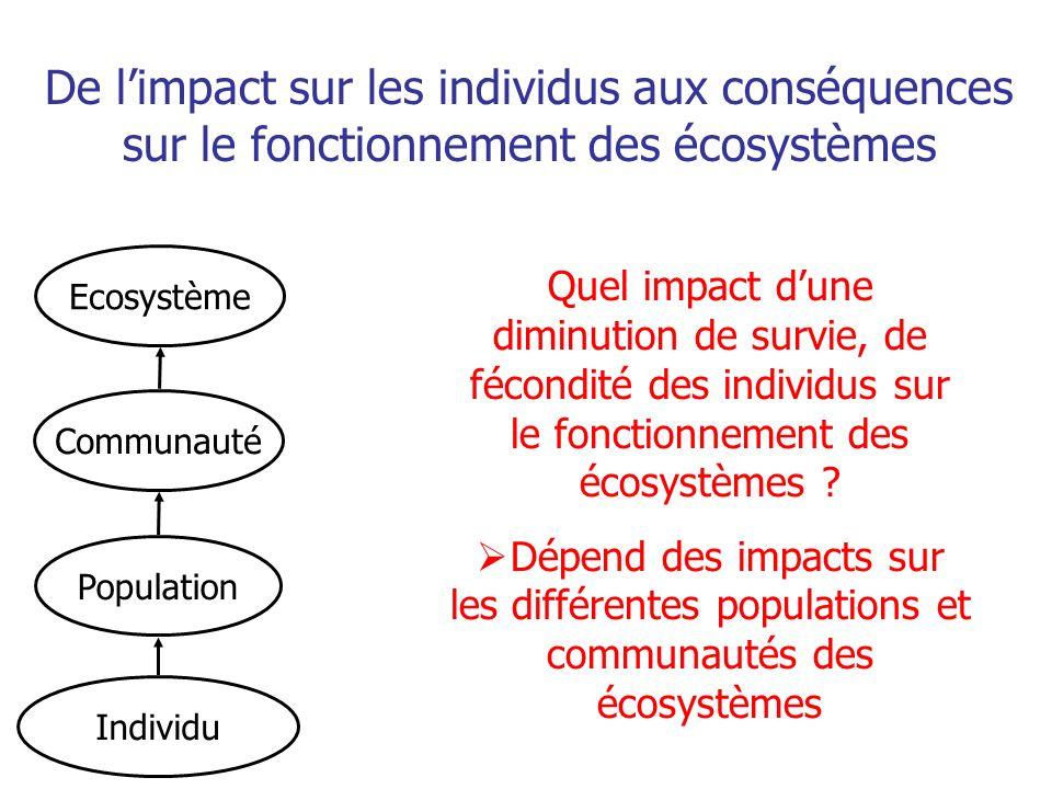 Communauté Population Individu De limpact sur les individus aux conséquences sur le fonctionnement des écosystèmes Ecosystème Quel impact dune diminution de survie, de fécondité des individus sur le fonctionnement des écosystèmes .