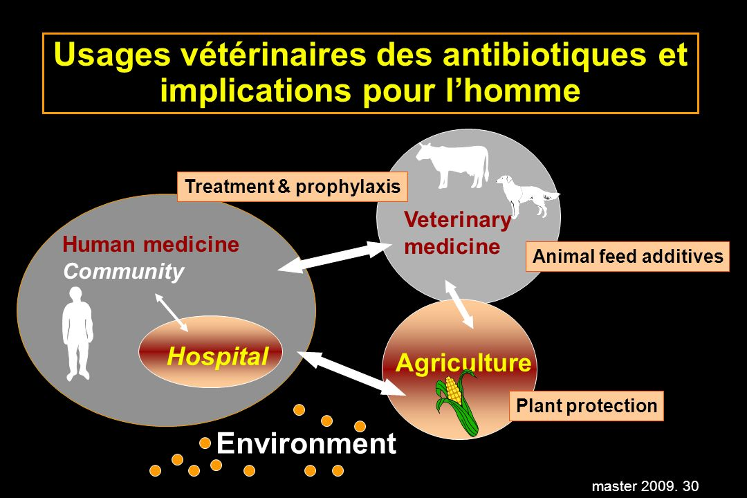 master 2009. 30 Usages vétérinaires des antibiotiques et implications pour lhomme Treatment & prophylaxis Human medicine Community Veterinary medicine