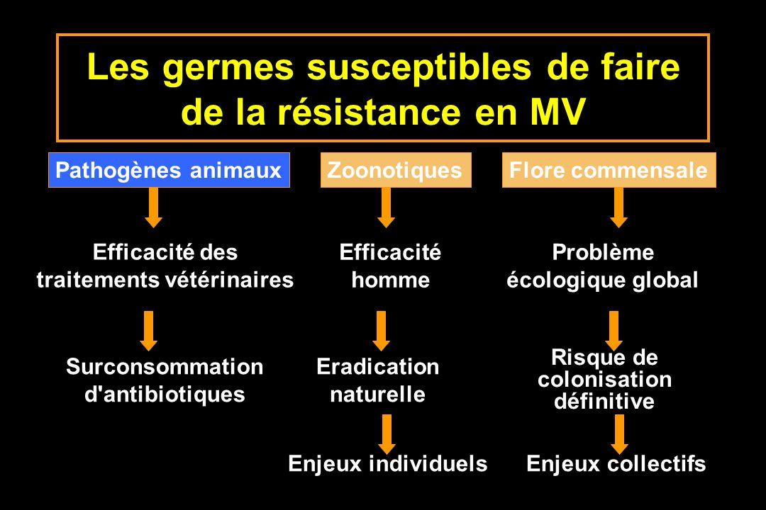 Les germes susceptibles de faire de la résistance en MV Pathogènes animauxZoonotiquesFlore commensale Efficacité des traitements vétérinaires Efficaci