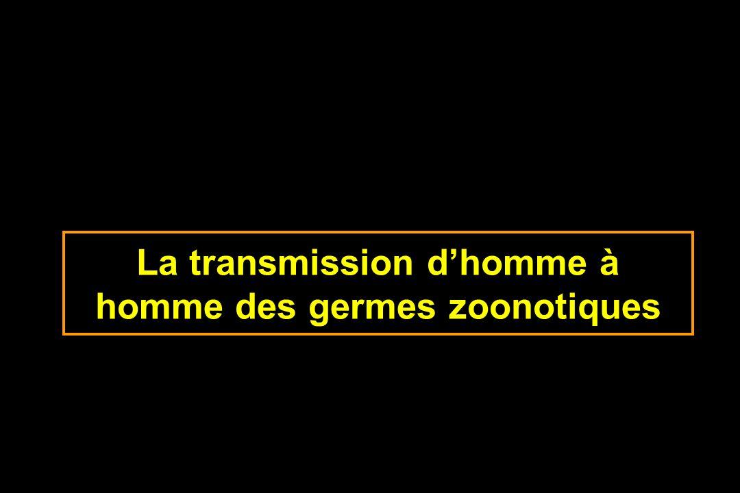 La transmission dhomme à homme des germes zoonotiques