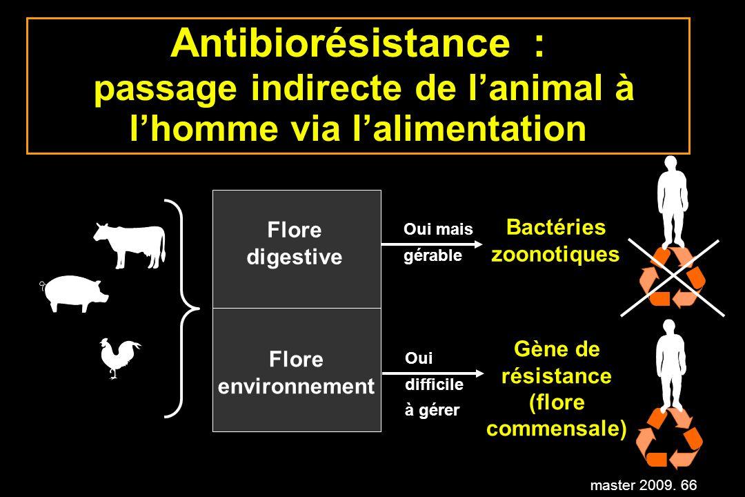 master 2009. 66 Antibiorésistance : passage indirecte de lanimal à lhomme via lalimentation Flore digestive Flore environnement Bactéries zoonotiques