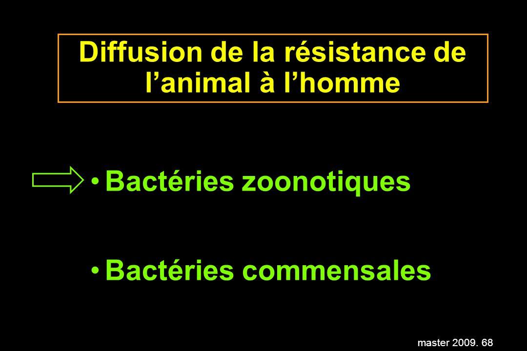 master 2009. 68 Diffusion de la résistance de lanimal à lhomme Bactéries zoonotiques Bactéries commensales