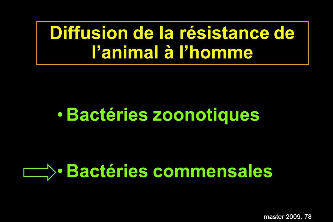 master 2009. 78 Diffusion de la résistance de lanimal à lhomme Bactéries zoonotiques Bactéries commensales