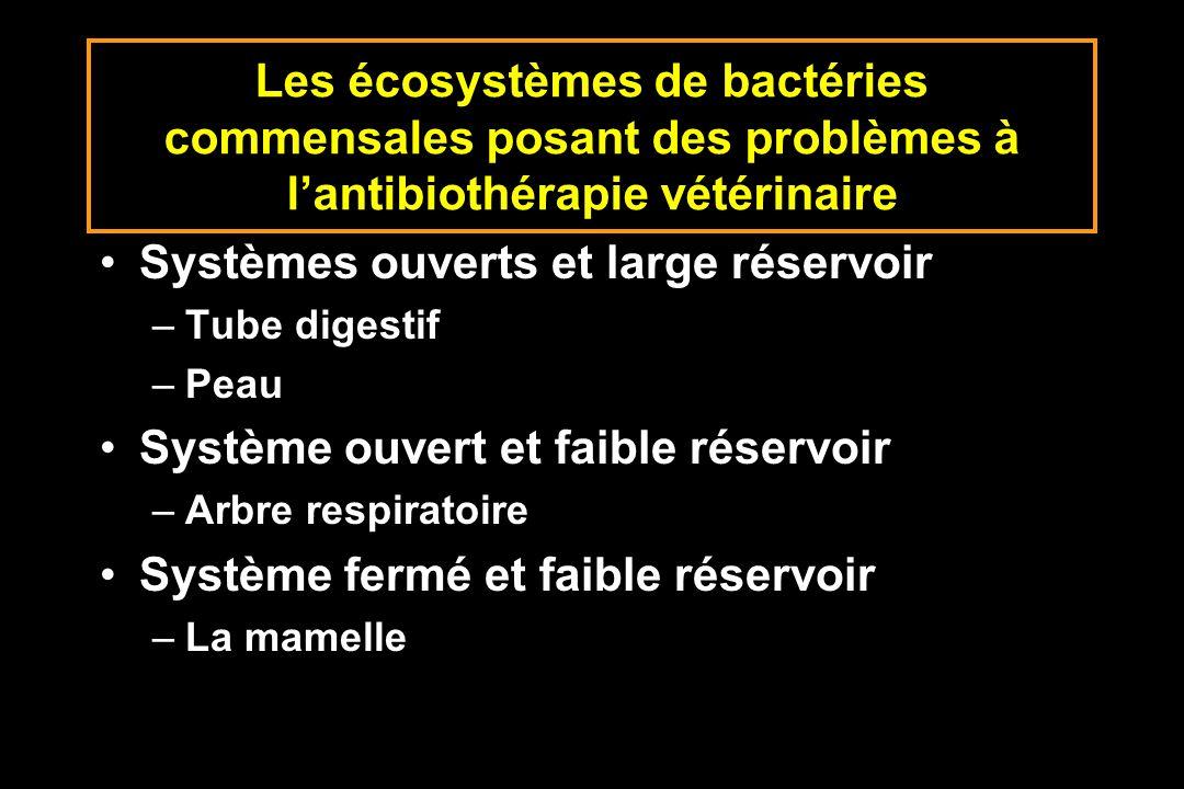 Les écosystèmes de bactéries commensales posant des problèmes à lantibiothérapie vétérinaire Systèmes ouverts et large réservoir –Tube digestif –Peau